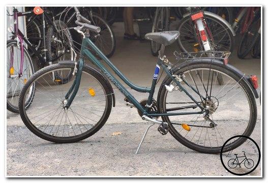 Городской женский велосипед Pegasus
