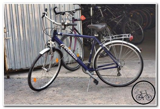 Мужской туристический велосипед Pegasus