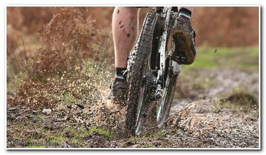 на велосипеде по болоту