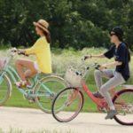 На велосипеде хорошо, но воздушные перевозки тоже актуальны