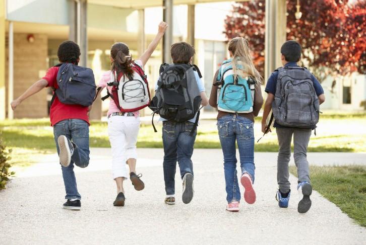 Школьные экскурсии: живо и познавательно 2
