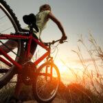 Когда появились велосипеды и какое имели социальное значение?