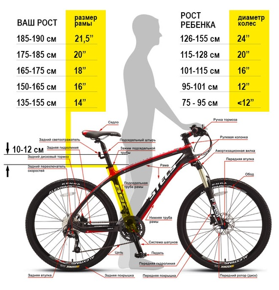 Как выбрать хороший горный велосипед? 1