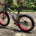 Преимущества брендовых велосипедов Momentum и Haibike